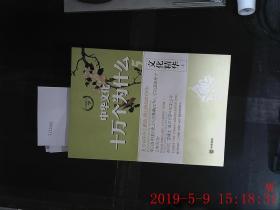 中华文化 十万个为什么 文化精华 上下