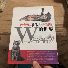 大宠爱带你走进猫咪的世界