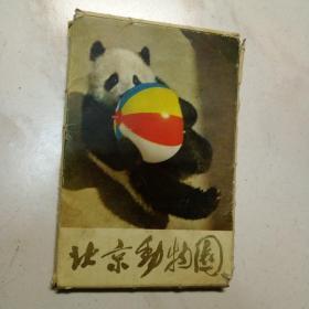 北京动物园  明信片全14张