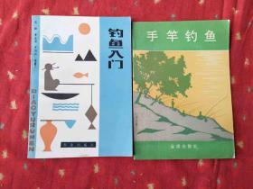 钓鱼入门 手竿钓鱼 二书合售