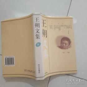 王朔文集(1——4)