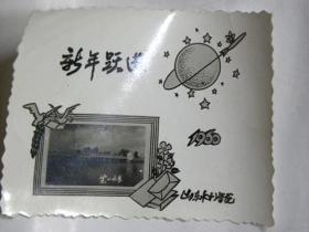 新年跃进—山东水利学院(1960年)
