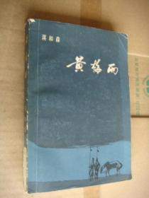 黄梅雨  (  蒋和森著,施大畏 等人插图)