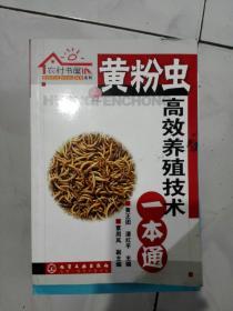 黄粉虫高效养殖技术一本通