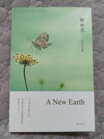 新世界:灵性的觉醒