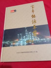 宝丰能源年鉴2013