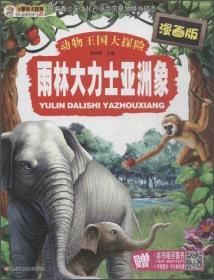 雨林大力士亚洲象