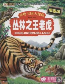 丛林之王老虎