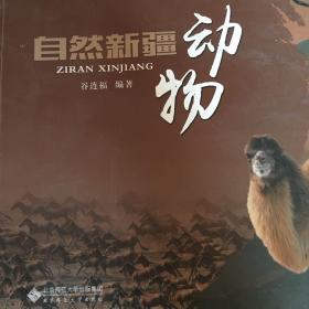 自然新疆.动物
