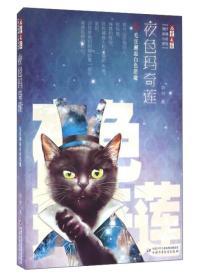 儿童文学顾抒秘境小说系列:夜色玛奇莲5 毛豆邂逅白色恶魔