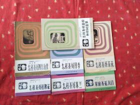 怎样养好月季 米兰 杜鹃花 茶花 盆松和松树盆景 四季海棠 家庭养花入门 七书合售