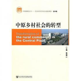 中原乡村社会的转型