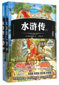 (正版)(彩绘精装版)新课标无障碍经典阅读:水浒传(全两册)