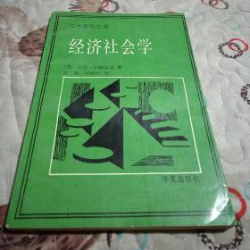 经济社会学(二十世纪文库)