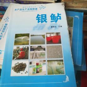 水产品生产流程图谱:银鲈