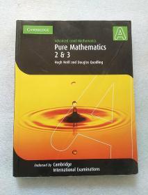 Pure Mathematics 2 and 3