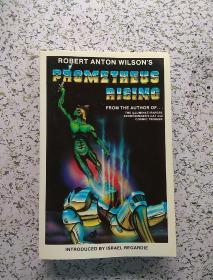 Prometheus rising 配有许多幽默有趣插图-私藏书,融各种社会科学(心理学,哲学等),文学等一体。
