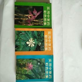 实用中草药彩色图集(一,二,三册合售)正版,近十品