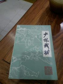 少林武功  (品优)