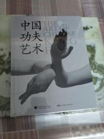 中国功夫艺术