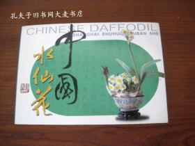 明信片.中国水仙花(20张全)  上海书画出版社