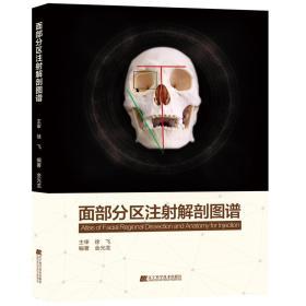 面部分区注射解剖图谱