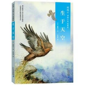 椋鸠十动物小说 爱藏本03 生于天空