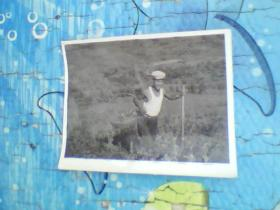 老照片;一个人在农田里