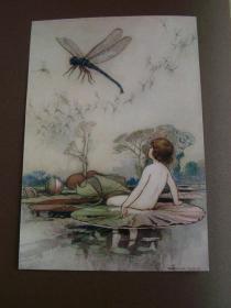 水孩子,1909年,32幅粘贴彩图,精美精致