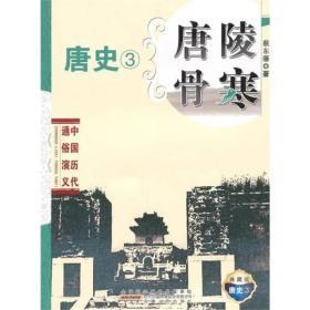 中国历代通俗演义:唐陵骨寒