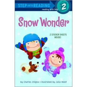 Snow Wonder[雪奇迹]