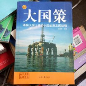通向大国之路的中国能源发展战略