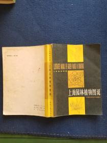 上海园林植物图说