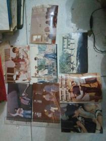 八十年代老照片彩色8张合售
