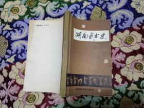 湖南武术史.