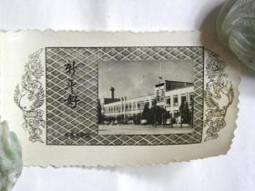 青岛医学院新年好—青岛医学院同学互赠贺年卡(1962年)