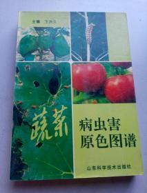 蔬菜病虫害原色图谱   9552