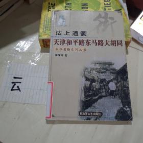 沽上通衢天津和平路东马路大胡同    中华名街系列丛书