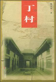 中国老村:丁村