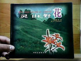 灵 山野花
