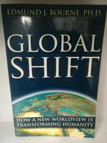 Global Shift:How A New Worldview Is Transforming Humanity by Edmund J. Bourne (未来学)英文原版书