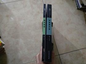 美术鉴赏+外国美术史【21世纪高等院校美术专业教材】两册合售