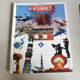 世界王牌武器百科图典 . 6导弹
