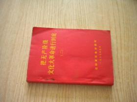 《把无产阶级文化大革命进行到底2》,64开集体著,沈阳1967.5出版,6899号,语录244页