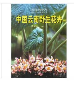 正版   中国釉陶艺术(精装)   90329x