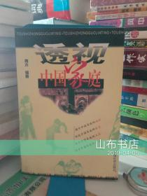 透视中国家庭【一版一印、软精装】