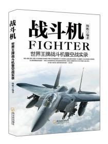 军事系列图书·战斗机:世界王牌战斗机暨空战实录