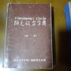 拼元汉字字典(初稿) 罕见