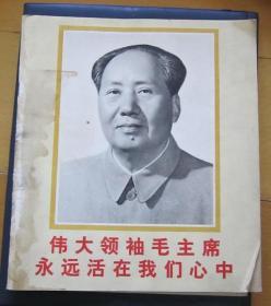 毛主席画报伟大领袖毛主席永远活在我们心中