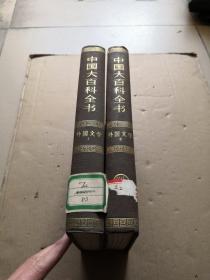中国大百科全书 外国文学(全2卷)精装乙种本